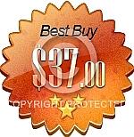 Best Buy Price Burst