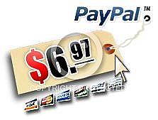 PayPal Price Tag